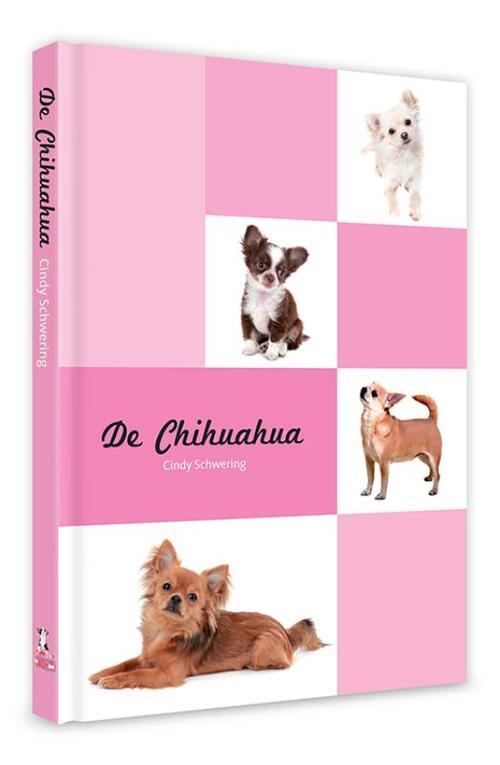Afbeelding van De Chihuahua