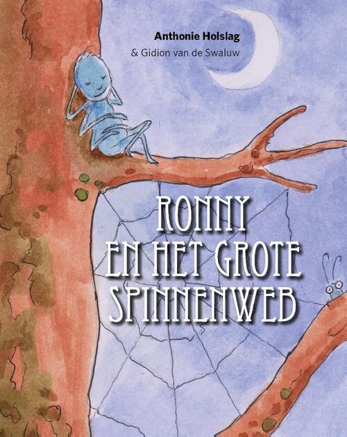 Afbeelding van Ronny en het grote spinnenweb