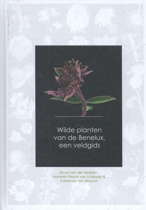 Afbeelding van Wilde planten van de Benelux, een veldgids