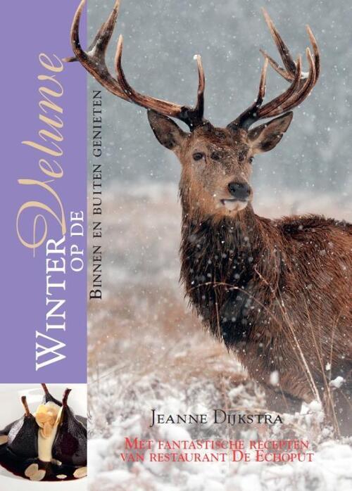 Afbeelding van Winter op de Veluwe