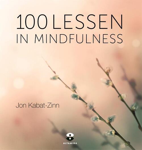 Afbeelding van 100 Lessen In Mindfulness