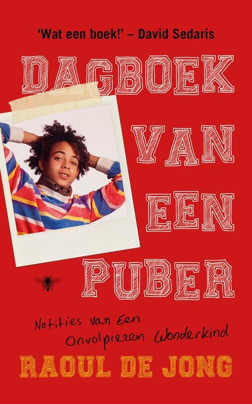 Afbeelding van Dagboek van een puber