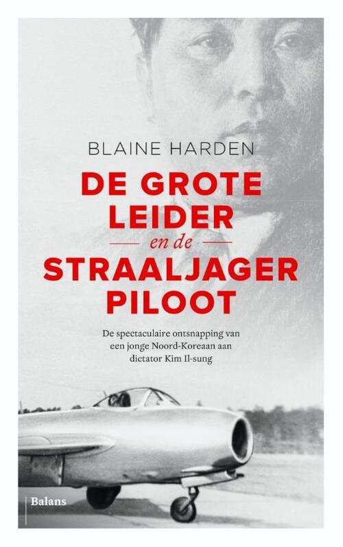 Afbeelding van De Grote Leider en de straaljagerpiloot