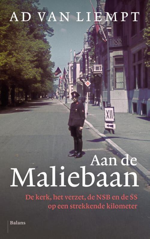 Afbeelding van Aan de maliebaan
