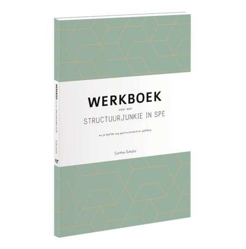 Afbeelding van Werkboek voor een structuurjunkie in spe