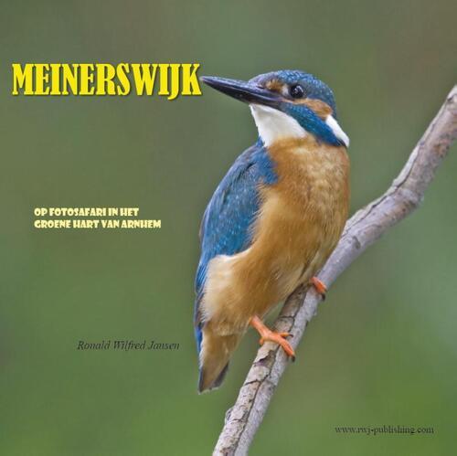 Afbeelding van Meinerswijk