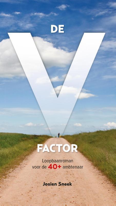 Afbeelding van De V-factor