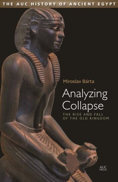 Afbeelding van Analyzing Collapse