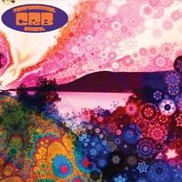 Phosphorescent Harvest-Chris -Brotherhood- Robinson-CD
