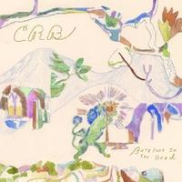 Barefoot In The Head-Chris -Brotherh Robinson-CD