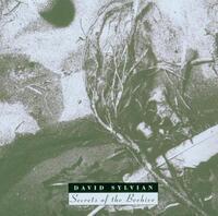 Secrets Of The Beehive-David Sylvian-CD