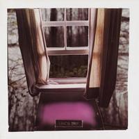 Forever Again-Eric's Trip-LP