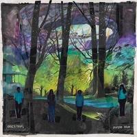 Purple Blue-Eric's Trip-LP