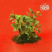 New Misery-Cullen Omori-LP