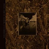 C'mon.. -Coloured--Pixies-LP