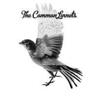 The Common Linnets-The Common Linnets-CD
