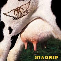 Get A Grip-Aerosmith-LP