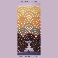 What In The Natural World-Jake Xerxes Fussell-CD