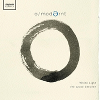 White Light: The Space Between-Modernt Chamber Orchestra-CD