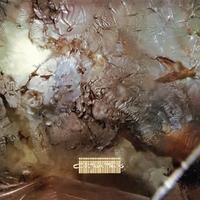 Head Over Heels-Cocteau Twins-LP