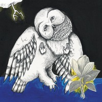The Magnolia Electric Co (Deluxe)-Songs: Ohia-CD