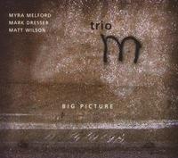 Big Picture-Dresser, Melford, Wilson Trio-CD