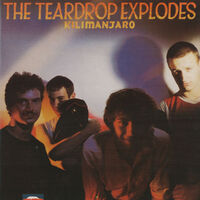 Kilimanjaro (Rem.)-The Teardrop Explodes-CD