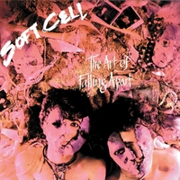 The Art Of Falling Apart-Soft Cell-CD
