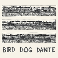 Bird Dog Dante-John Parish-CD