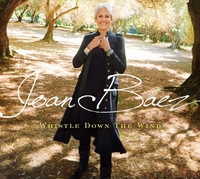 Whistle Down The Wind-Joan Baez-LP