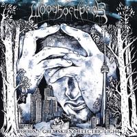 Woods 5: Grey Skies &..-Woods Of Ypres-LP