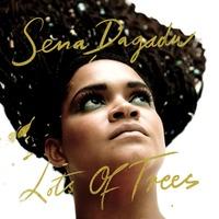 Lots Of Trees-Sena Dagadu-CD