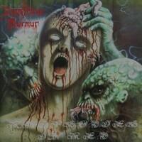 Rhapsodies In Red (Reissue)-Disastrous Murmur-CD