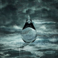 The Death Of Our Invention-Birds Of Passage-CD