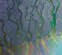 An Awesome Wave-Alt-J-LP