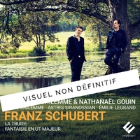 Quintet The Trout D667 Fantasie In-Guillaume Chilemme Nathanael Gouin-CD