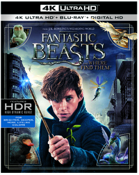 Fantastic Beasts And Where To Find Them (4K Ultra HD En Blu-Ray)-4K Blu-Ray