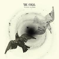 Distance Inbetween-The Coral-CD