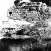 Mare Decendrii-Mamiffer-CD