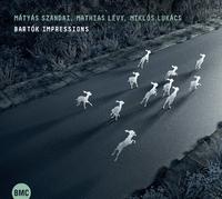 Bartok Impressions-Matyas Szandai & Miklos Lucacs Mathias Levy-CD