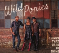 Things That Used To Shine-Wild Ponies-CD