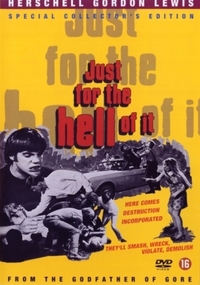 Just For The Hell Of It-DVD