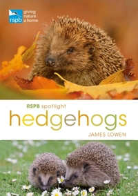 RSPB Spotlight Hedgehogs-James Lowen