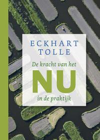 De kracht van het nu in de praktijk-Eckhart Tolle