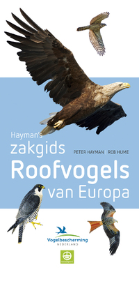 Haymans zakgids Roofvogels van Europa-Peter Hayman, Rob Hume