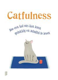 Catfulness-Paolo Valentino