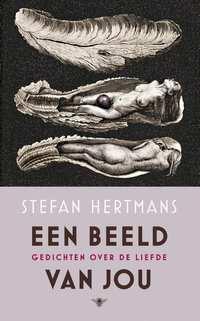 Een beeld van jou-Stefan Hertmans