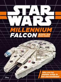 Star Wars - Millenium Falcon workshop-