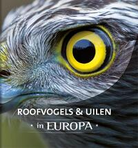 Roofvogels en uilen in Europa-Arno ten Hoeve, Jaap Schelvis