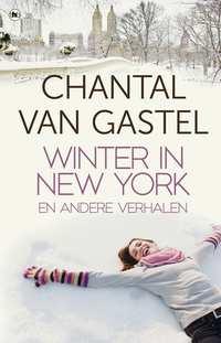 Winter in New York-Chantal van Gastel